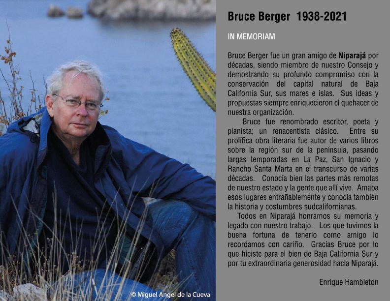 BruceBerger